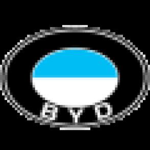 avto-akkumulyator-BYD