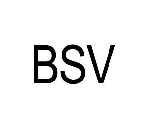 Аккумуляторы для мотоцикла Bsv