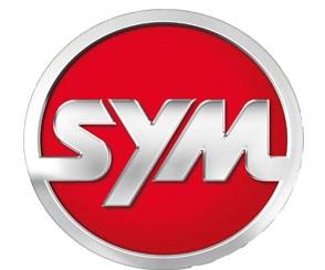 Аккумуляторы для мотоцикла Sym