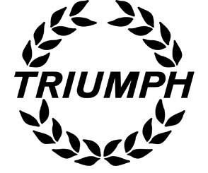 Аккумуляторы для мотоцикла Triumph